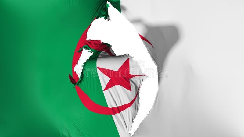 损坏的阿尔及利亚旗子 库存例证