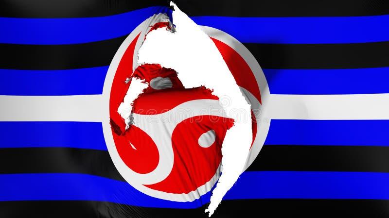 损坏的Tanos自豪感旗子 向量例证