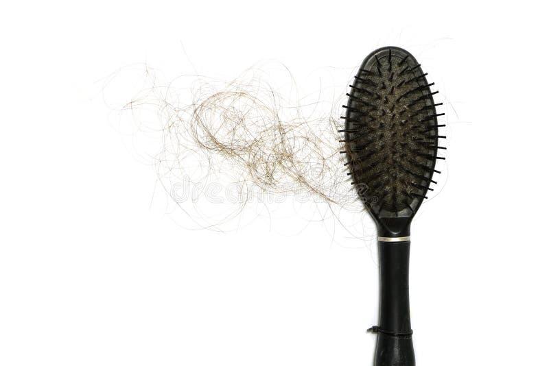 损失长的头发通过落和棍子梳子,当在白色背景的妇女用途有拷贝空间 那是问题可能使无毛 免版税库存照片