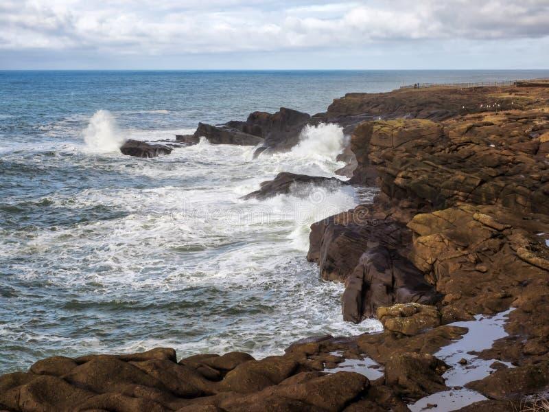 捣在坚固性海岸挥动 免版税库存照片
