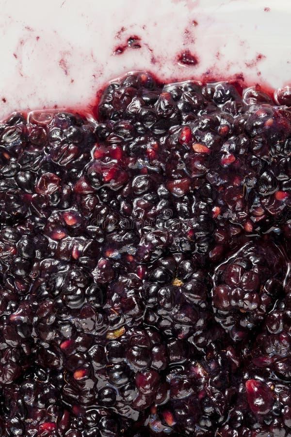 捣毁的黑莓果子 免版税库存照片