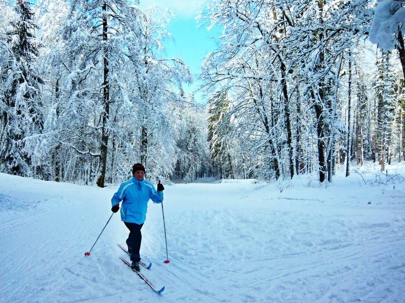 捷克共和国滑雪者在Trutnov附近的森林里 免版税库存照片