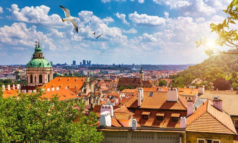 捷克布拉格市红色天际线的顶峰 从空中俯瞰布拉格城市,赤土屋瓦,布拉格, 库存照片
