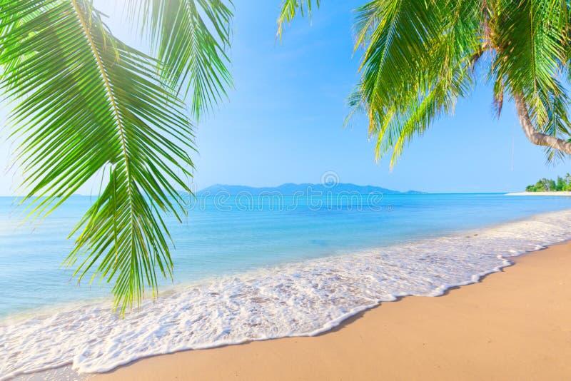 掌上型计算机和热带海滩 免版税库存照片