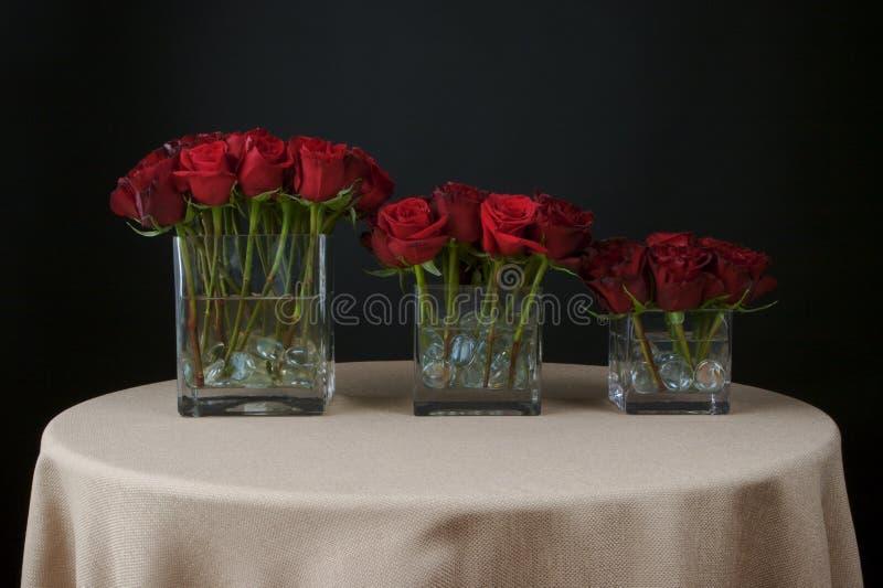 排列美丽的花上升了 库存照片
