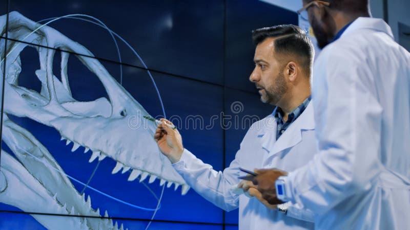 探索三维打印的恐龙模型的古生物学家 免版税库存图片