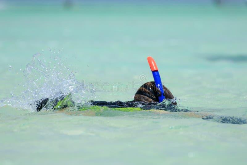 探索在与鱼和珊瑚的水上乐园下的潜航的年轻男孩在红海用与管的水晶水和体育面具, 库存照片