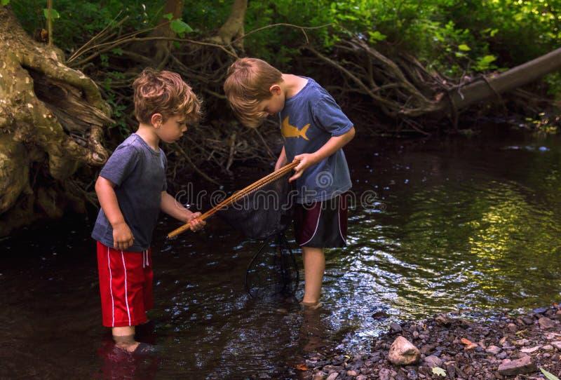 探索森林地小河的孩子使用网 图库摄影
