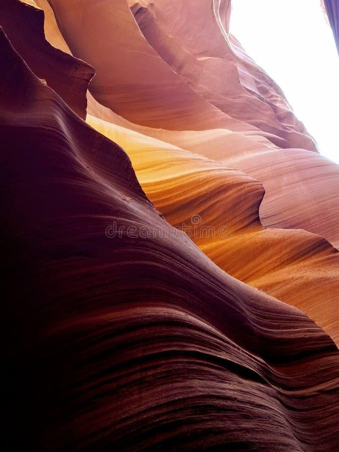 探索的羚羊峡谷亚利桑那美国 免版税库存图片
