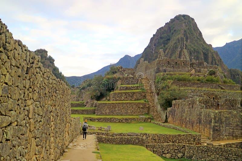 探索马丘比丘印加人城堡的一个及早鸟访客在黎明,库斯科,秘鲁 免版税库存图片