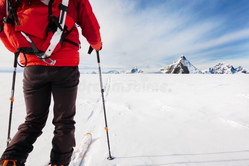 探索与滑雪的登山家冰川在高alti期间 免版税库存照片