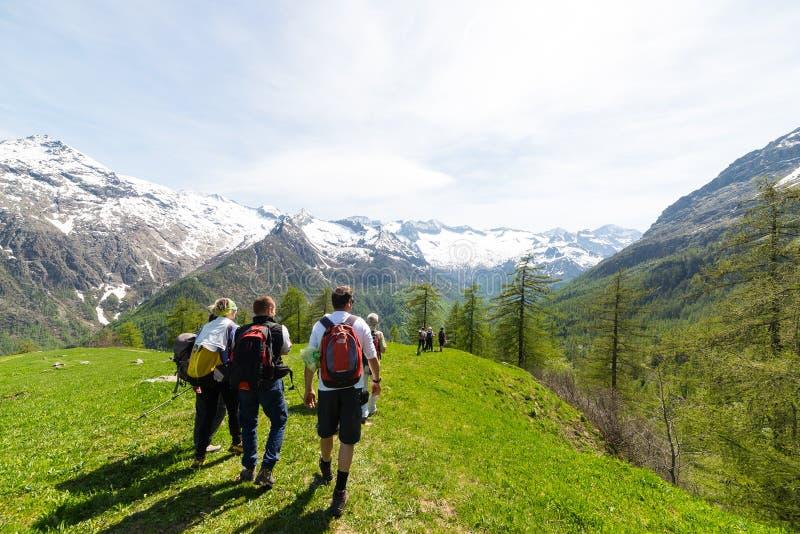 探索阿尔卑斯,室外活动的小组远足者在夏天 免版税库存图片
