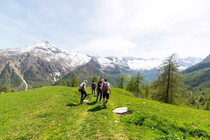 探索阿尔卑斯,室外活动的小组远足者在夏天 库存图片
