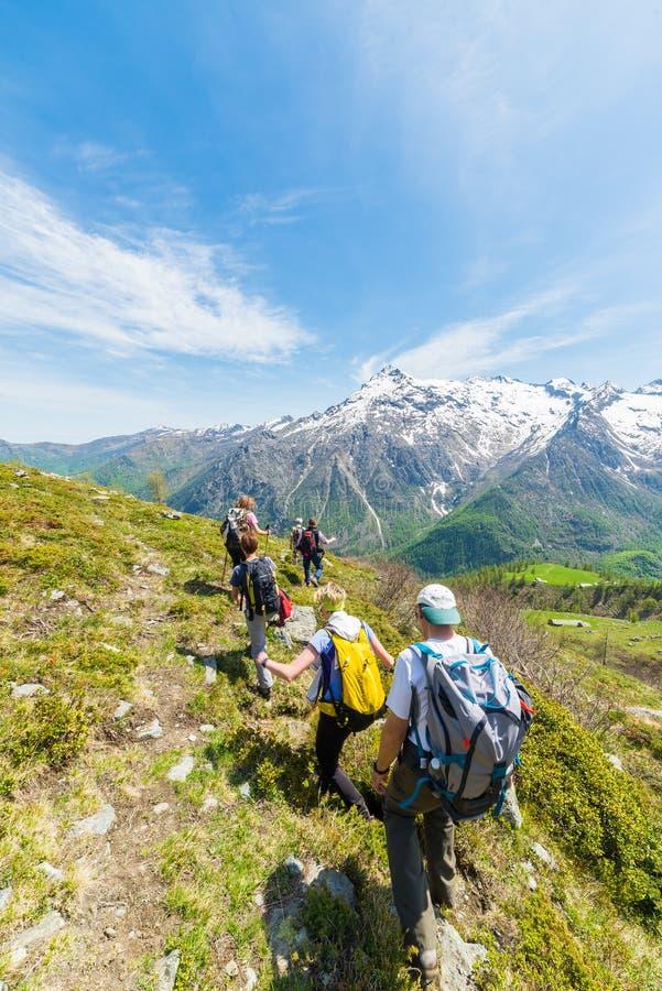 探索阿尔卑斯,室外活动的小组远足者在夏天 库存照片