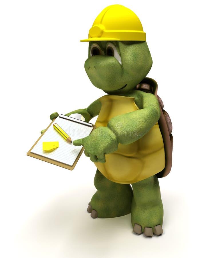 接受草龟的建造者组合证券 皇族释放例证