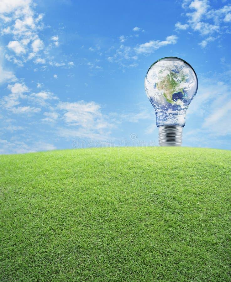 接地在电灯泡的地球与在蓝天的绿草领域, 免版税库存照片