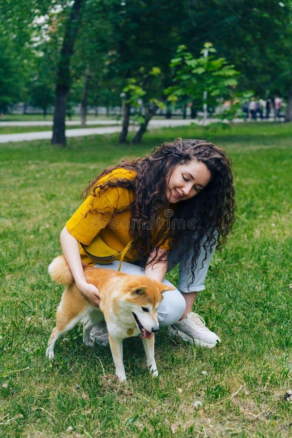 接触shiba inu狗的美丽的年轻女人在绿色草坪的公园 免版税库存图片