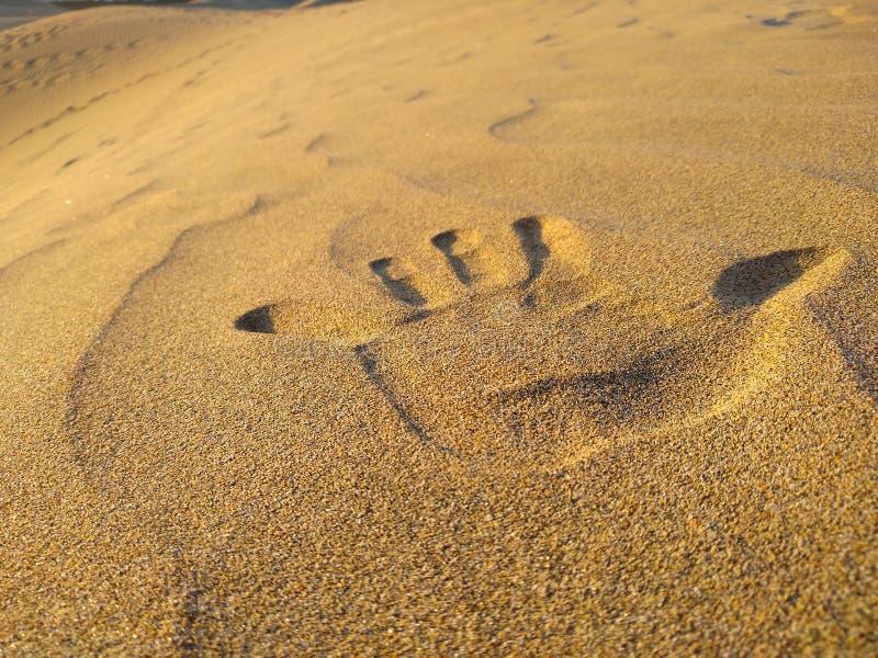 接近手印刷品用左手在沙漠的沙丘的金黄沙子 r 库存图片