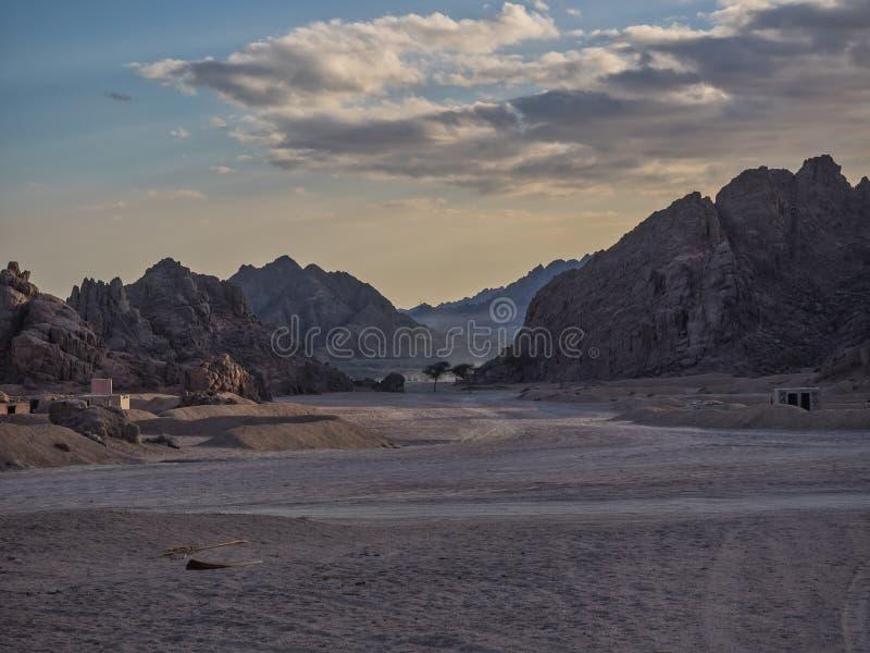 接近日落的西奈沙漠 免版税图库摄影