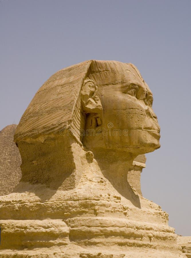 接近的埃及sphynx 免版税库存图片