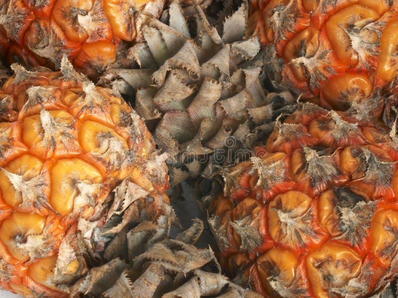 接近的宏观菠萝小  免版税库存照片