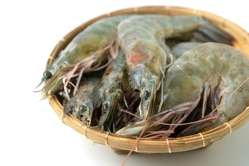接近的小组在竹碗的新鲜的未加工的和平的白色虾在白色背景被隔绝的背景 库存图片