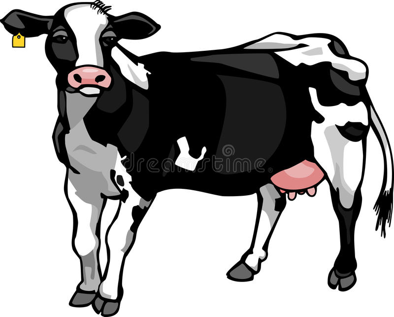接近的母牛牛奶店题头s 向量例证