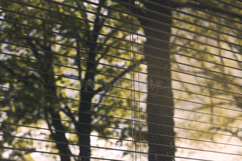 接近的照片窗帘开放/被关闭的一半 与显示在背景的自然和城市细节的美好的光 肮脏的窗口 免版税图库摄影