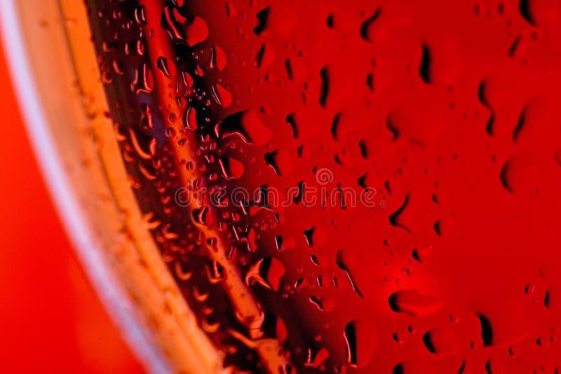 接近的玻璃宏观红色玫瑰色酒 库存照片