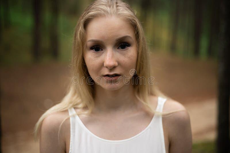 接近的画象-在白色礼服的美丽的幼小白肤金发的妇女森林若虫在常青木头 库存照片