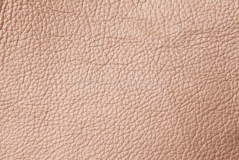 接近的皮革模式 库存照片
