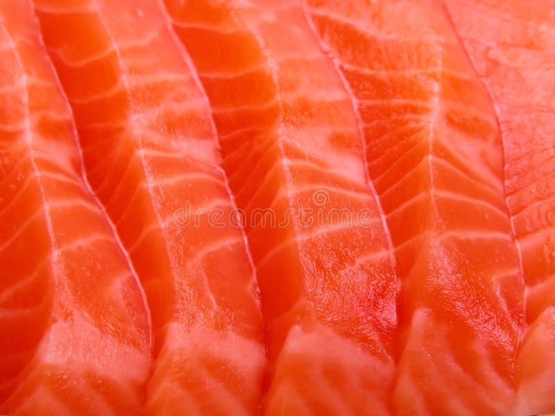 接近的肉三文鱼 库存照片