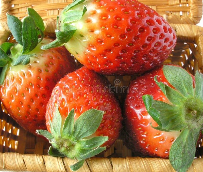 接近的草莓 免版税图库摄影