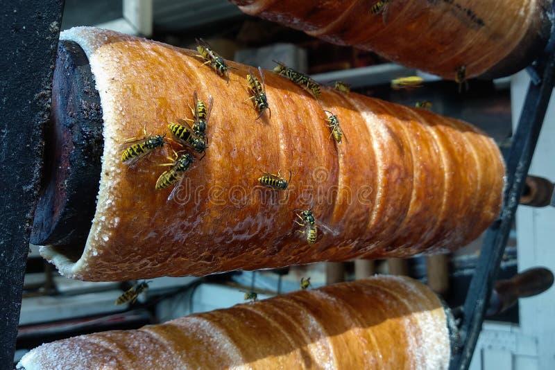 接近的观点的在蜂窝的工作的蜂用甜蜂蜜 蜂蜜是养蜂业健康产物 免版税库存图片