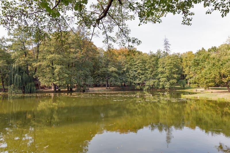 接近Schonborn城堡的湖 Chynadiyovo,乌克兰 库存照片