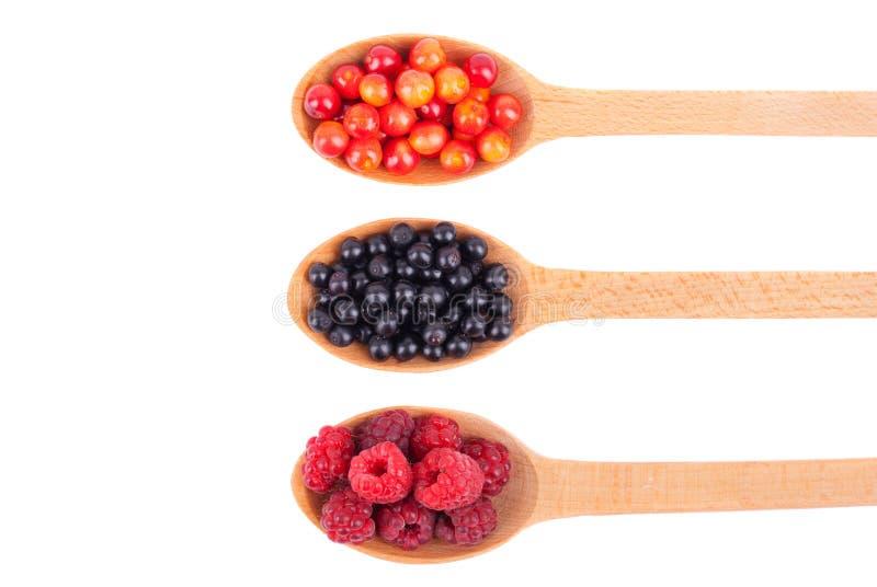 接骨木浆果、蔓越桔和莓在一把木匙子 免版税库存照片