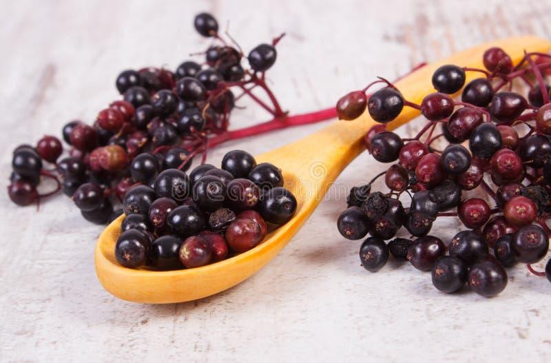 Download 接骨木浆果堆与木匙子的在老木背景,健康食物 库存图片. 图片 包括有 工厂, 土气, 食物, 本质, 板条 - 59110773