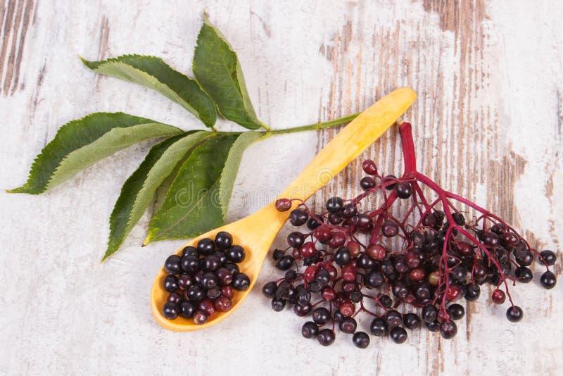 Download 接骨木浆果堆与木匙子的在老木背景,健康食物 库存照片. 图片 包括有 自然, 发狂, 果子, 绿色, 点心 - 59110786