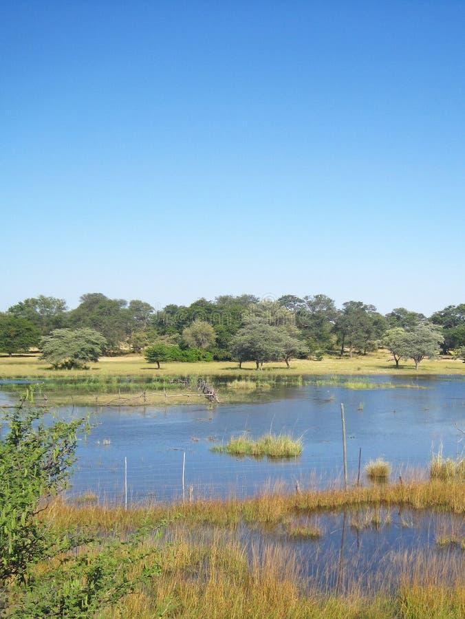 推挤在正常界限的KAVANGO河看法 库存照片