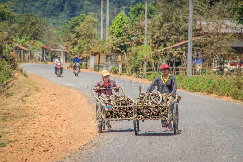 推挤在轮子的两名亚裔村庄妇女一个推车有木头的在村庄 免版税库存照片