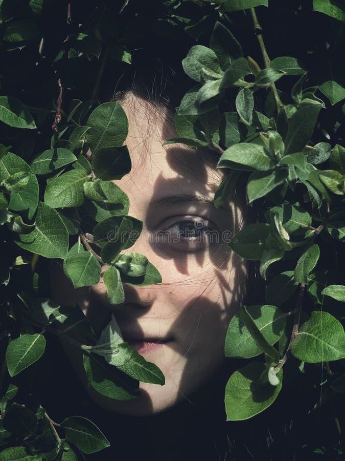 掩藏在绿色叶子的女孩 免版税库存图片