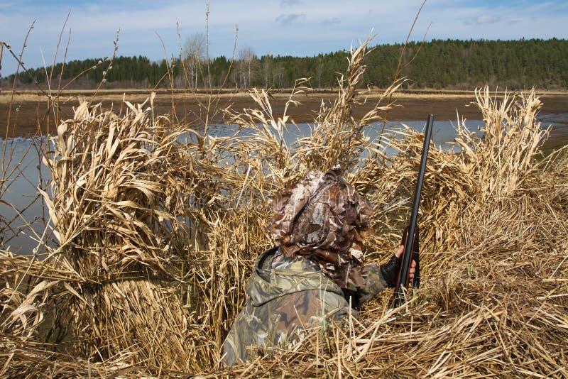 掩藏在鸭子窗帘等待的比赛的猎人 免版税图库摄影