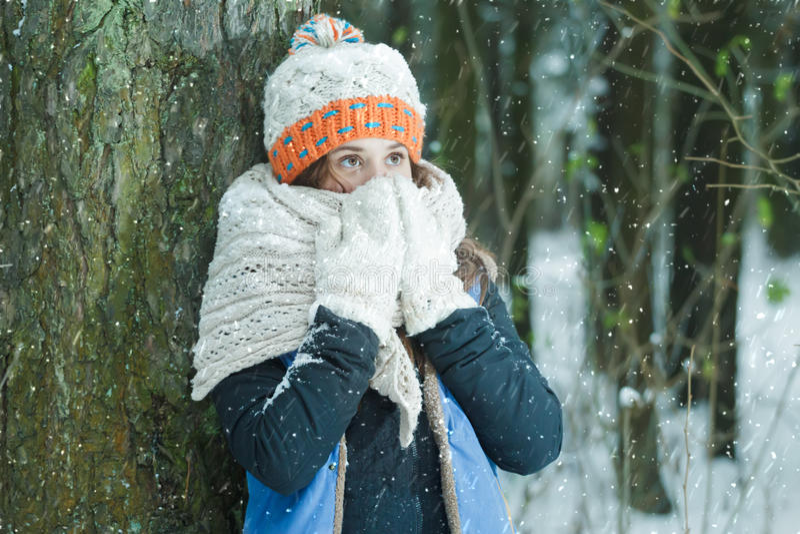 掩藏她的与羊毛内衣的被编织的庞大的围巾的女孩画象面孔在冬天霜降雪期间户外 库存照片