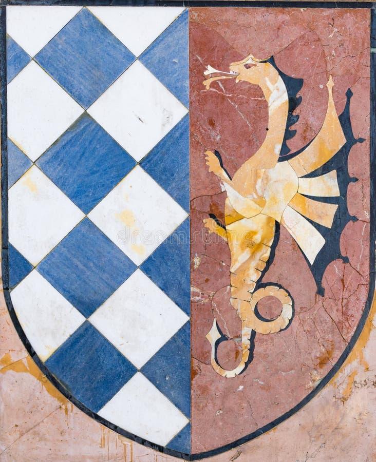 描述有龙的徽章盾 库存图片