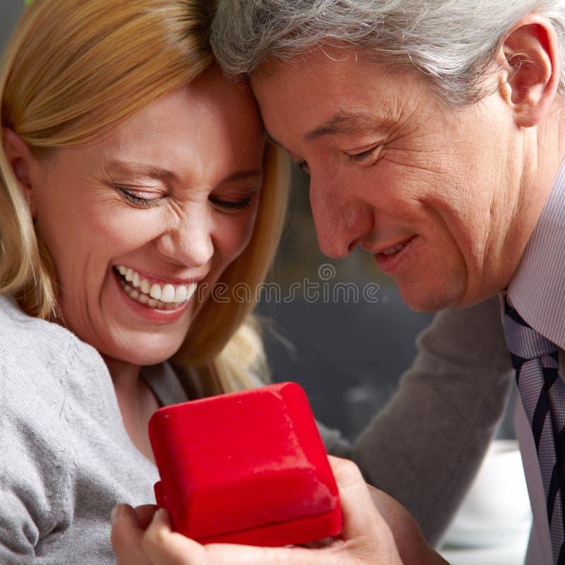 提出人结婚提议 库存照片