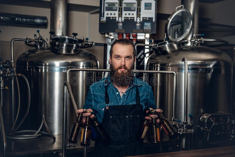 提出啤酒的人制造商在microbrewery 免版税库存图片