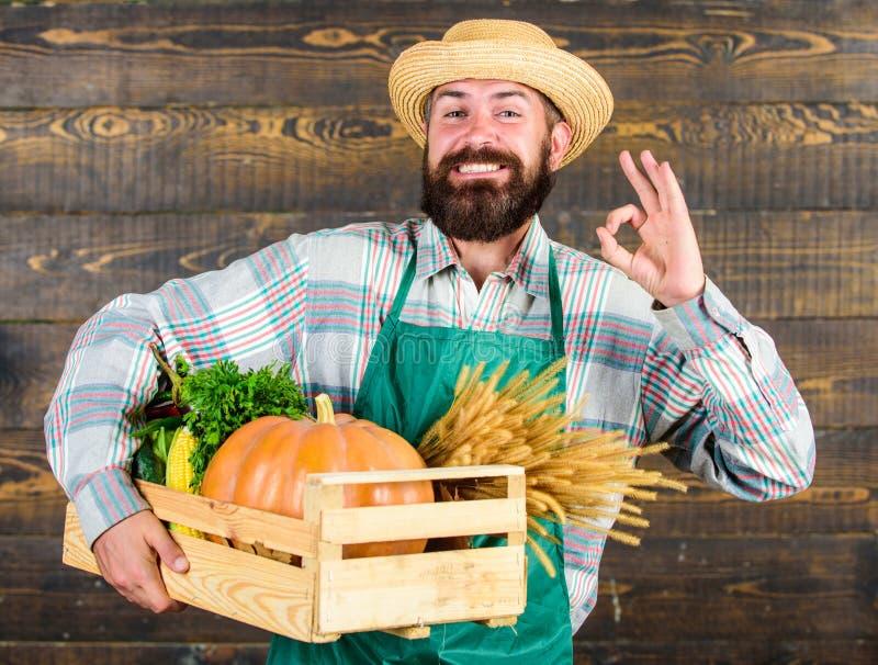 草帽农夫_新鲜的有机菜箱子 农夫行家草帽交付新鲜蔬菜 新鲜蔬菜送货业务