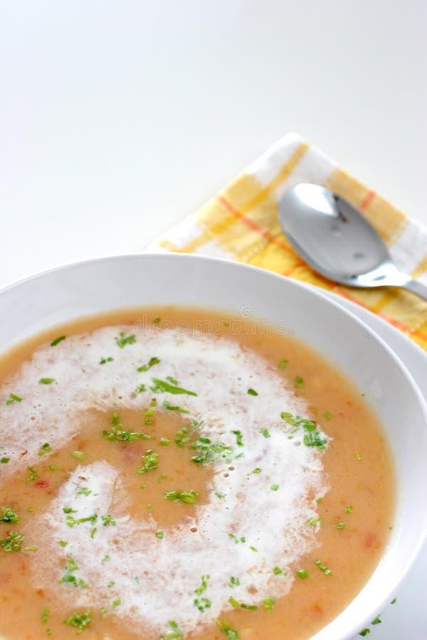 提取乳脂的汤 库存图片