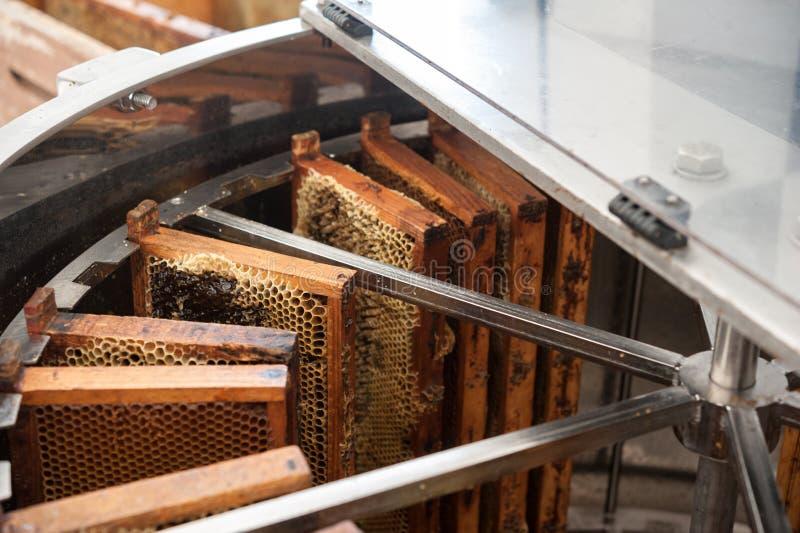 提取的蜂蜜离心机 免版税库存图片