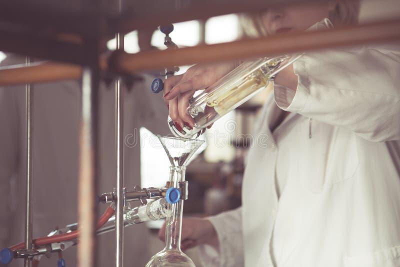 提取精油的索格利特提取器 运输液体从索格利特提取器到蒸馏用具 演示 库存照片
